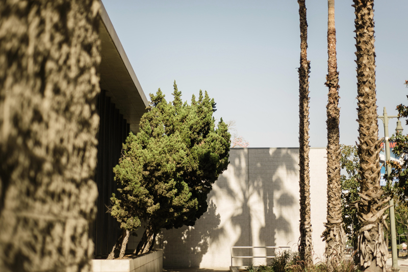 Los Angeles, California, LA, USA, America, Travel Photography,