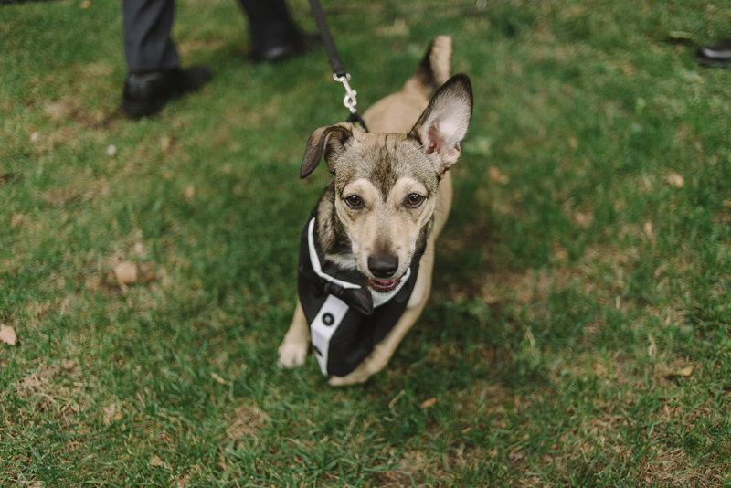 catskills-wedding-photographer-111